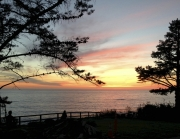 Esalen Sunset, tree, sea, meditators.