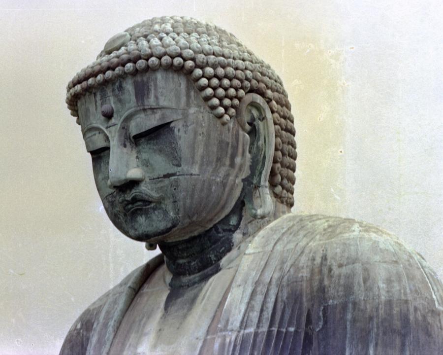 Kamakura 8X10 Buddha Head