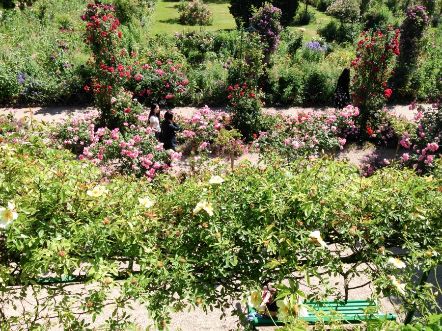 Monet home giverny june 2015 shared beauty for Monet home