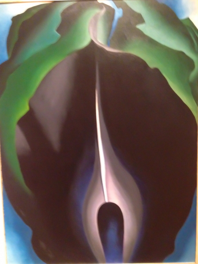 O'Keefe's Jack in the Pulpit IV and VI detail1