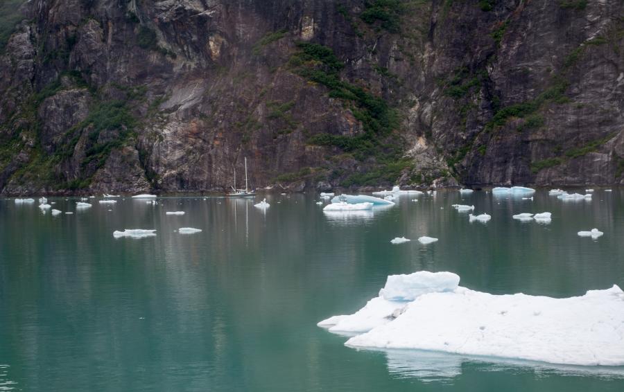 Sailboat Tracy Arm Glacier 2015-1