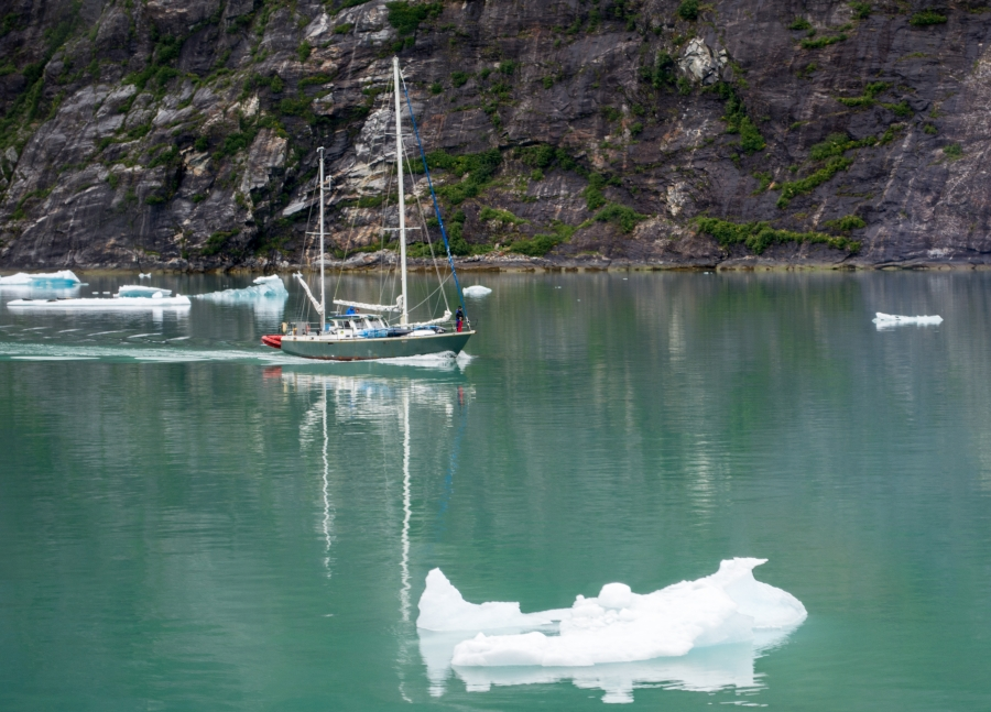 Sailboat Tracy Arm Glacier 2015-5