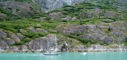 Tracy Arm Glacier Best 2015-15