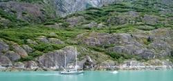 Tracy Arm Glacier Best 2015-15