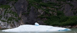 Tracy Arm Glacier Best 2015-19