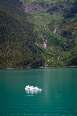 Tracy Arm Glacier Best 2015-2