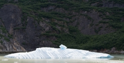 Tracy Arm Glacier Best 2015-23