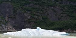 Tracy Arm Glacier Best 2015-23