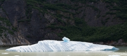Tracy Arm Glacier Best 2015-24