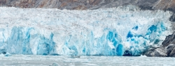 Tracy Arm Glacier Best 2015-27