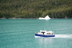 Tracy Arm Glacier Best 2015-4