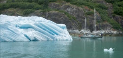 Tracy Arm Glacier Best 2015-11