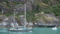 Tracy Arm Glacier Best 2015-16
