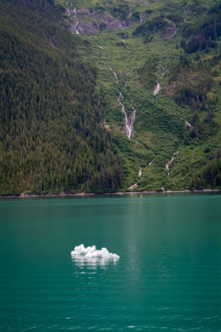Tracy Arm Glacier Best 2015-2
